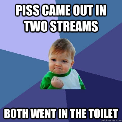 Piss came out in two streams both went in the toilet - Piss came out in two streams both went in the toilet  Success Kid