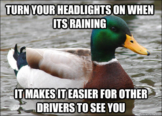 turn your headlights on when its raining it makes it easier for other drivers to see you - turn your headlights on when its raining it makes it easier for other drivers to see you  Actual Advice Mallard