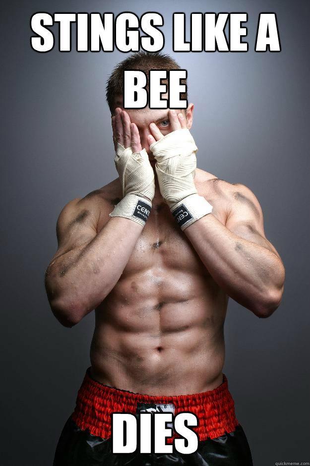 Stings Like a bee Dies  Boxer