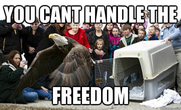 YOU CANT HANDLE THE FREEDOM - YOU CANT HANDLE THE FREEDOM  Misc