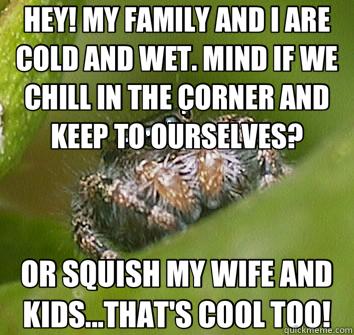 7cef529fa8522fb608e94138fb79afd65fb689e998a2cbcfbf38e6434102647a misunderstood spider memes quickmeme,Misunderstood Spider Meme