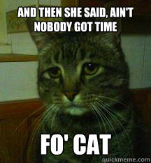 And then she said, ain't nobody got time fo' cat
