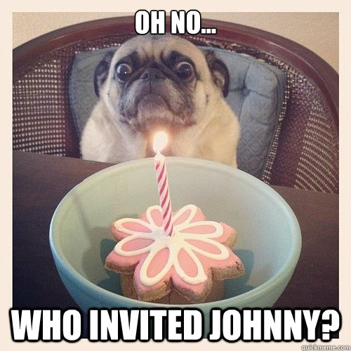 Oh no... Who invited Johnny? - Oh no... Who invited Johnny?  Scared birthday pug