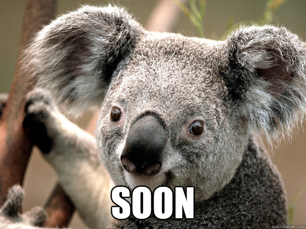 SOON -  SOON  Evil Koala Bear
