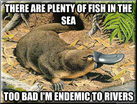 There are plenty of fish in the sea too bad i 39 m endemic to for Plenty of fish in the sea meme