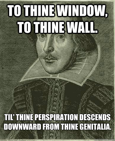 To Thine Window, to thine wall.  til' thine perspiration descends downward from thine genitalia. - To Thine Window, to thine wall.  til' thine perspiration descends downward from thine genitalia.  Theatre major shakespeare