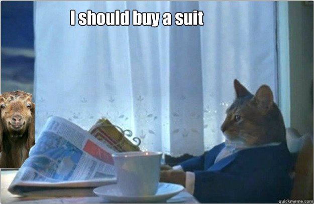 I should buy a suit - I should buy a suit  Sophisticated cat with a goat.