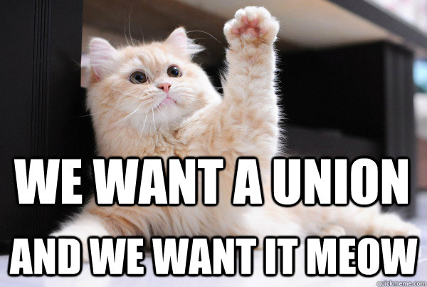 We want a union and we want it meow - We want a union and we want it meow  Misc