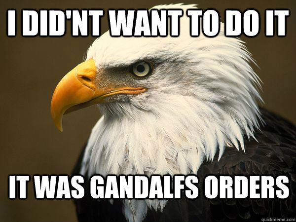 i did'nt want to do it It was gandalfs orders