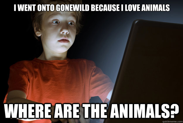I went onto Gonewild because I love animals Where are the animals?  scared first day on the internet kid