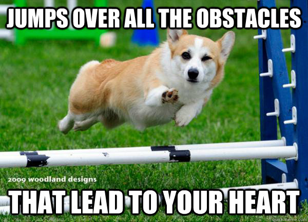 Jumps over all the obstacles That lead to your heart - Jumps over all the obstacles That lead to your heart  Misc