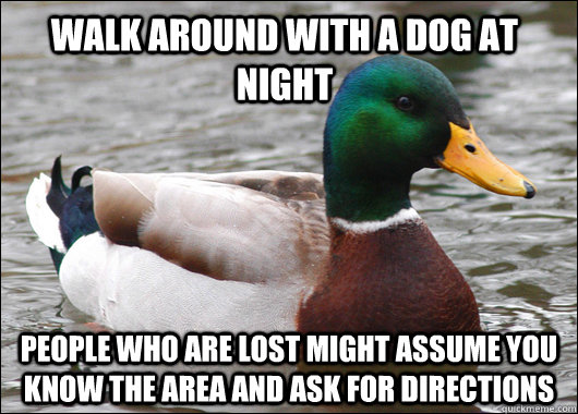 Walk around with a dog at night People who are lost might assume you know the area and ask for directions - Walk around with a dog at night People who are lost might assume you know the area and ask for directions  Actual Advice Mallard