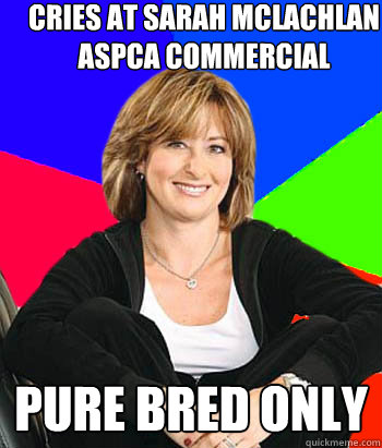 Cries at Sarah McLachlan ASPCA commercial PURE BRED ONLY - Cries at Sarah McLachlan ASPCA commercial PURE BRED ONLY  Sheltering Suburban Mom