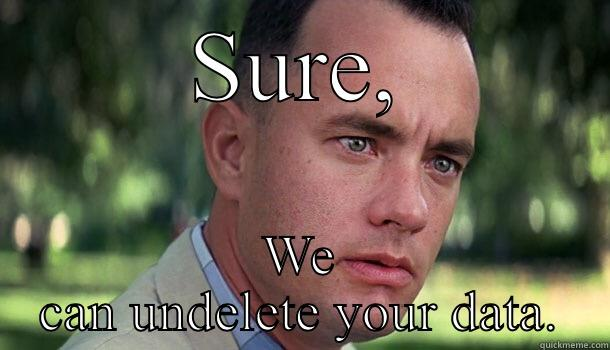 SURE, WE CAN UNDELETE YOUR DATA. Offensive Forrest Gump