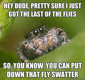 Hey dude, pretty sure I just got the last of the flies so, you know, you can put down that fly swatter  Misunderstood Spider