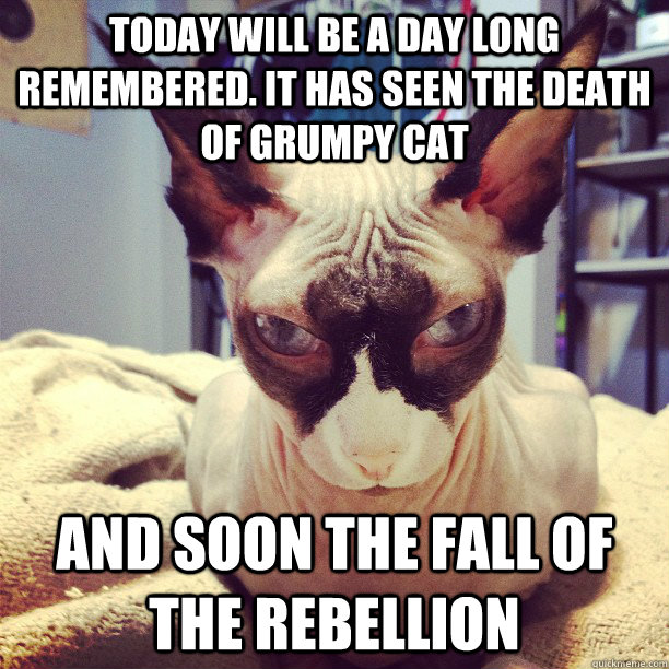 Today will be a day long remembered. It has seen the death of Grumpy Cat and soon the fall of the rebellion - Today will be a day long remembered. It has seen the death of Grumpy Cat and soon the fall of the rebellion  Darth Feline