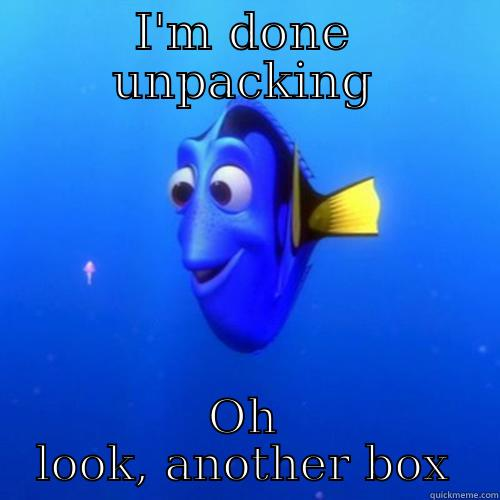 After moving into my new flat - I'M DONE UNPACKING OH LOOK, ANOTHER BOX dory