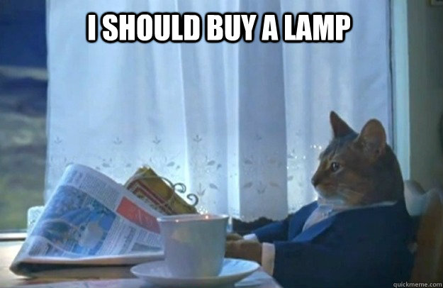 I should buy a lamp - I should buy a lamp  Sophisticated Cat