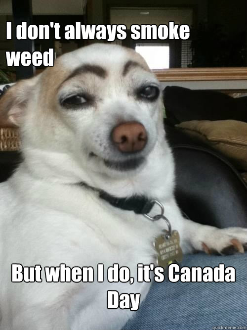 I don't always smoke weed But when I do, it's Canada Day  Most interesting dog in the world