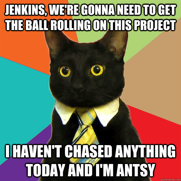 Jenkins, we're gonna need to get the ball rolling on this project I haven't chased anything today and I'm antsy - Jenkins, we're gonna need to get the ball rolling on this project I haven't chased anything today and I'm antsy  Business Cat