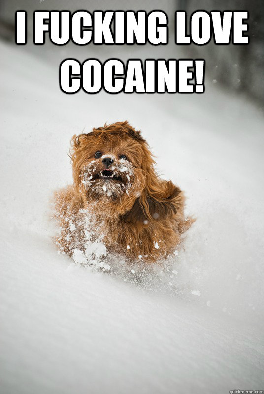 I fucking love cocaine!   coke bitch