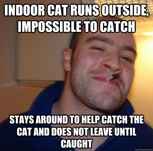 Indoor cat runs outside, impossible to catch stays around to help catch the cat and does not leave until caught - Indoor cat runs outside, impossible to catch stays around to help catch the cat and does not leave until caught  Misc
