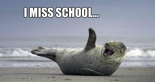 I miss school...
