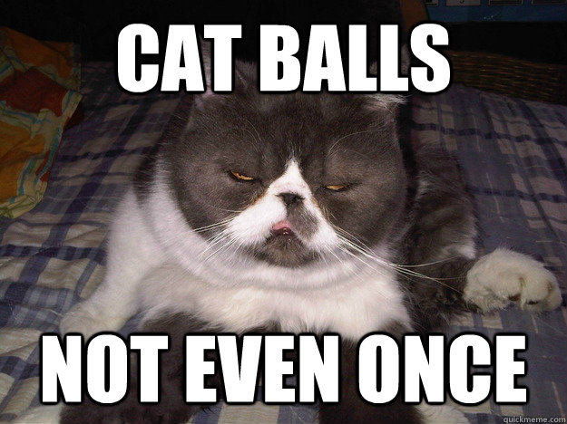 cat balls not even once