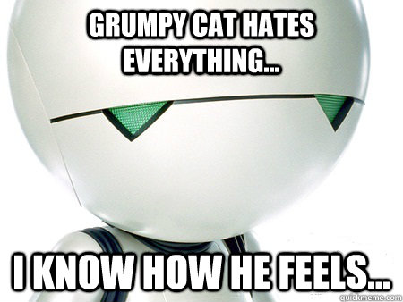 Grumpy cat hates everything... i know how he feels...