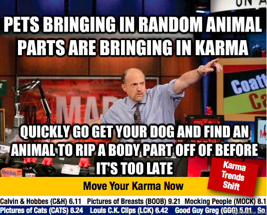 pets bringing in random animal parts are bringing in karma quickly go get your dog and find an animal to rip a body part off of before it's too late - pets bringing in random animal parts are bringing in karma quickly go get your dog and find an animal to rip a body part off of before it's too late  Mad Karma with Jim Cramer