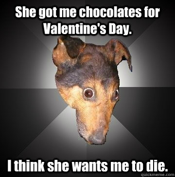 She got me chocolates for Valentine's Day. I think she wants me to die. - She got me chocolates for Valentine's Day. I think she wants me to die.  Depression Dog