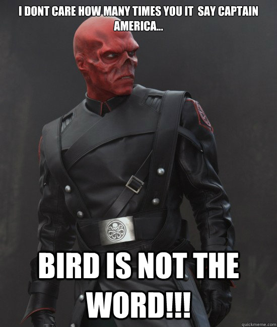 I dont care HOW MANY TIMES YOU IT  say Captain aMERICA... BIRD IS NOT THE WORD!!!  Grammar Nazi Red Skull