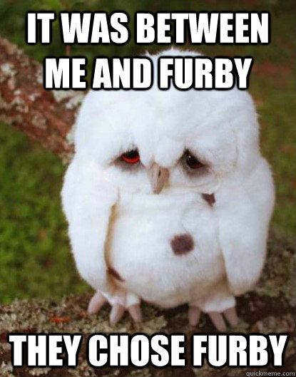 it was between me and furby they chose furby
