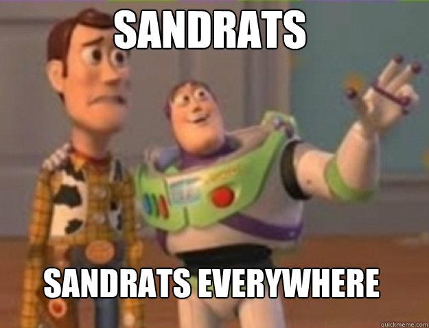 Sandrats sandrats Everywhere - Sandrats sandrats Everywhere  Misc