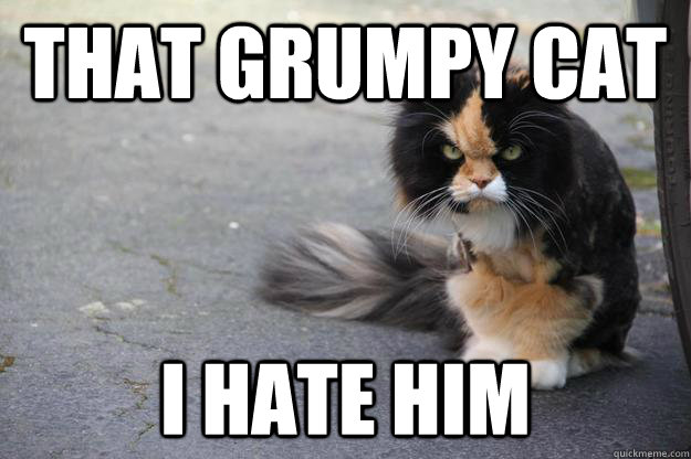 That Grumpy Cat I Hate Him - That Grumpy Cat I Hate Him  Angry Cat