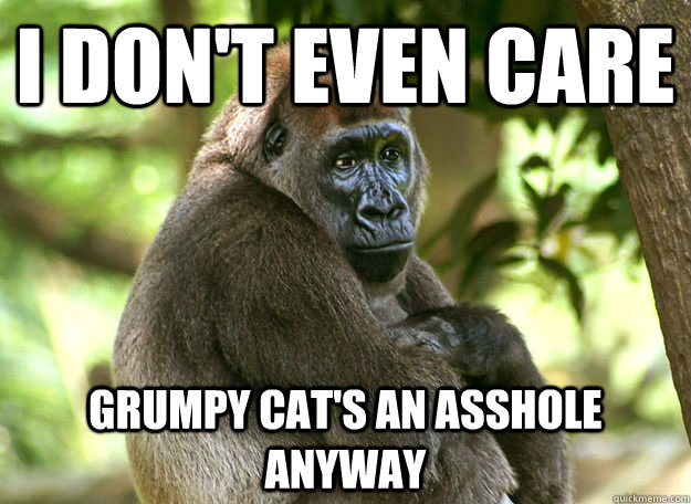 I don't even care Grumpy cat's an asshole anyway