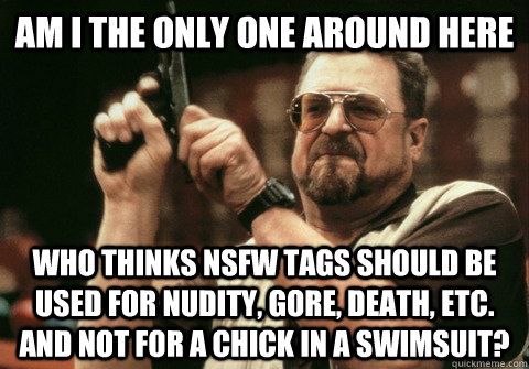 Am I the only one around here who thinks NSFW tags should be used for nudity, gore, death, etc. and not for a chick in a swimsuit? - Am I the only one around here who thinks NSFW tags should be used for nudity, gore, death, etc. and not for a chick in a swimsuit?  Am I the only one