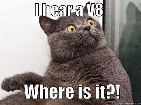 7ed5d8678dd969b5c90f1c0addf813b14b088b21fce5a20b8113044c851c6b9e conspiracy cat memes quickmeme