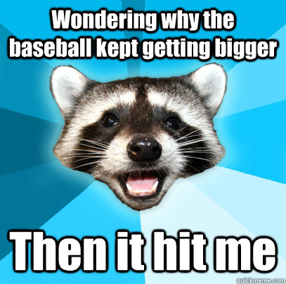 Wondering why the baseball kept getting bigger Then it hit me - Wondering why the baseball kept getting bigger Then it hit me  Lame Pun Coon