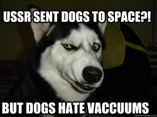USSR SENT DOGS TO SPACE?! BUT DOGS HATE VACCUUMS - USSR SENT DOGS TO SPACE?! BUT DOGS HATE VACCUUMS  Misc
