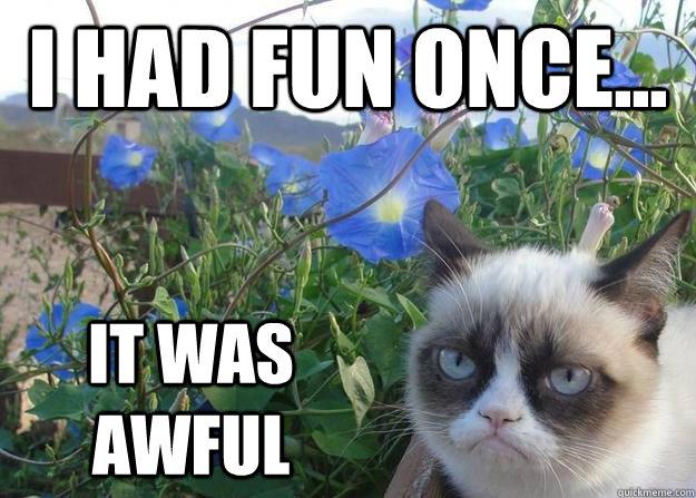 I had fun once... It was awful