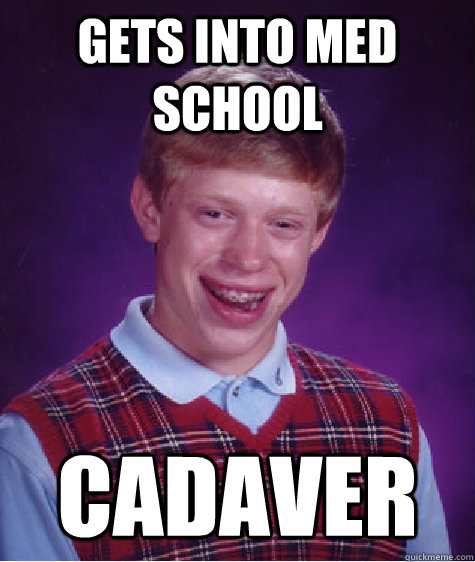 Gets into Med school Cadaver  - Gets into Med school Cadaver   Bad Luck Brian