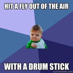 hit a fly out of the air with a drum stick