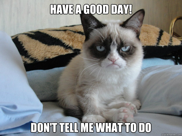 Have a good day! Don't tell me what to do  Grumpy cat in the morning