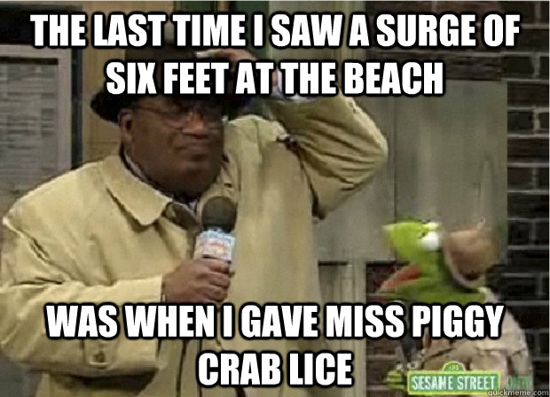 the last time i saw a surge of six feet at the beach was when i gave miss piggy crab lice - the last time i saw a surge of six feet at the beach was when i gave miss piggy crab lice  Foul Storm Joke Frog