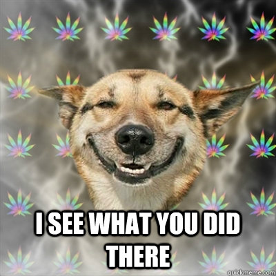 i see what you did there -  i see what you did there  Stoner Dog