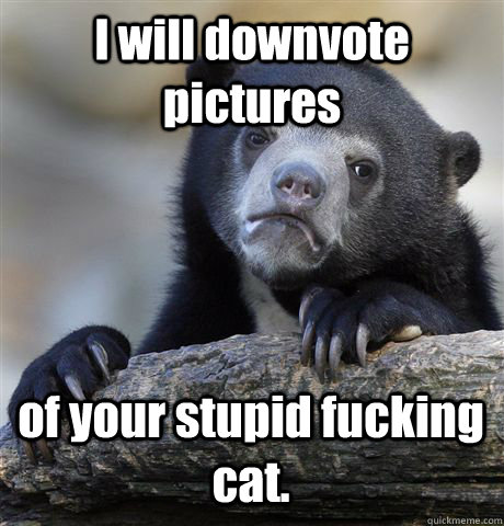 I will downvote pictures of your stupid fucking cat.  - I will downvote pictures of your stupid fucking cat.   Confession Bear