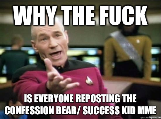 Why the fuck is everyone reposting the confession bear/ success kid mme - Why the fuck is everyone reposting the confession bear/ success kid mme  Annoyed Picard HD