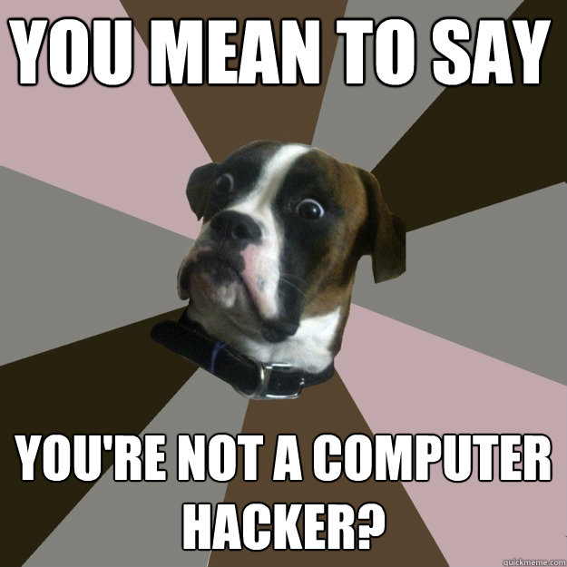 YOU MEAN TO SAY YOU'RE NOT A COMPUTER HACKER?  Genuinely Surprised Dog