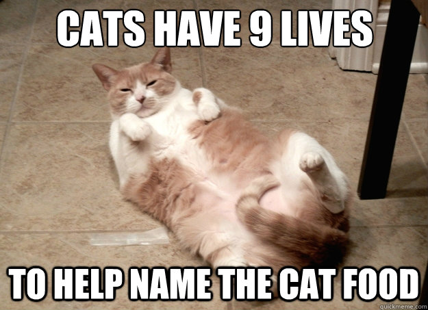 cats have 9 lives to help name the cat food - cats have 9 lives to help name the cat food  Misc